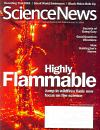Science News July 04, 2009