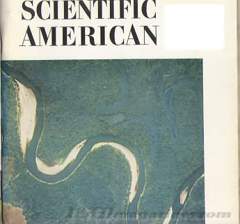 Scientific American June 1966